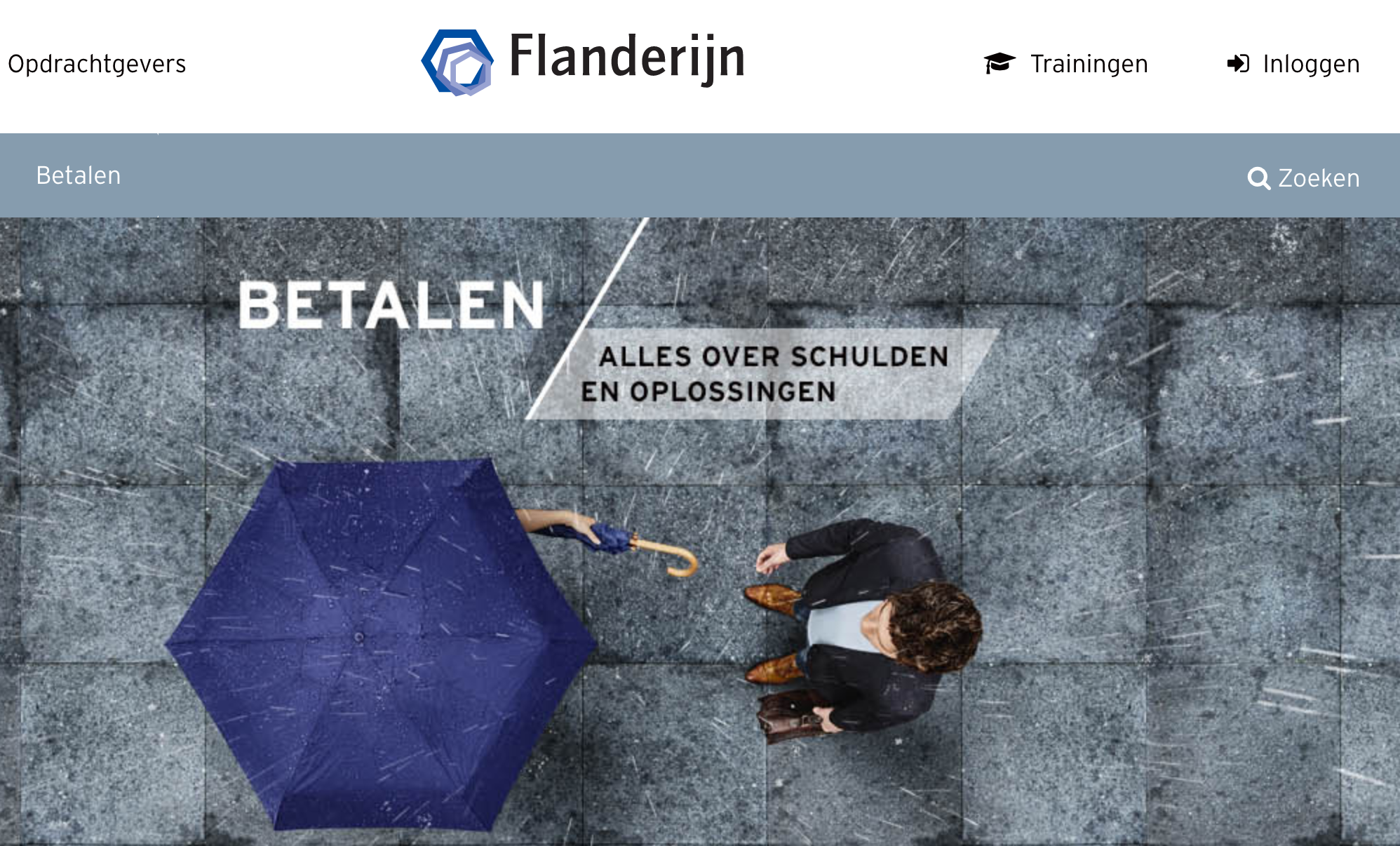 Website Flanderijn